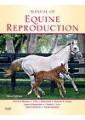 Large animals - Veterinary Medicine - Medicine - Non Fiction - Books 2