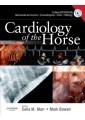 Equine veterinary medicine - Large animals - Veterinary Medicine - Medicine - Non Fiction - Books 10