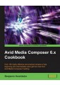 Digital Video: Professional - Graphical & Digital Media Applications - Computing & Information Tech - Non Fiction - Books 24